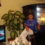 gino2009