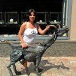 dragalasa2009