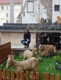 Mihaela_ella publi24 din Vaslui - 31 ani